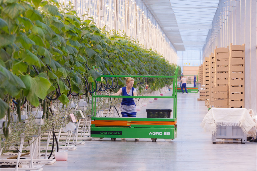 Trolley for greenhouses Walzmatic AGRO S5
